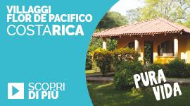 banner CostaRica Flor de Pacifico